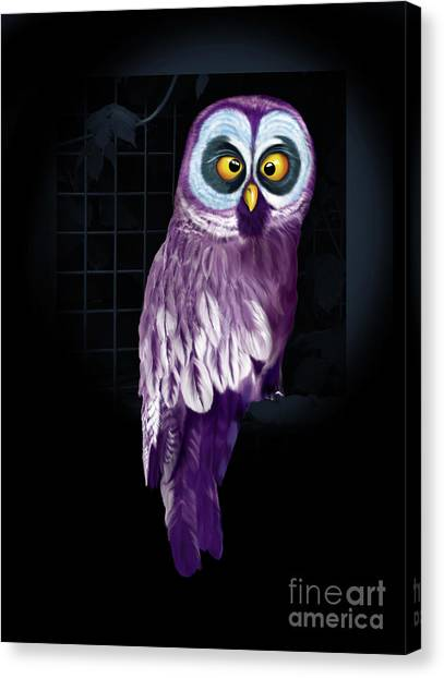 Big Eyed Owl Canvas Print