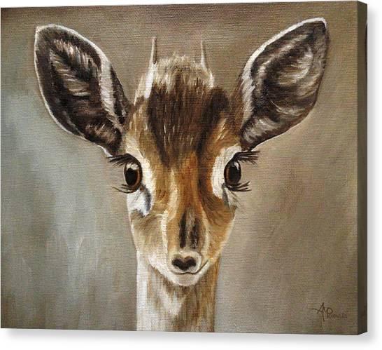 Big Eyes Dik-dik Canvas Print