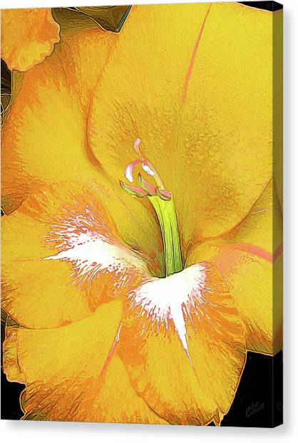 Big Glad In Yellow Canvas Print