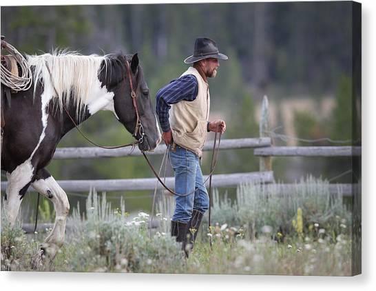 Big Horn Cowboy Canvas Print
