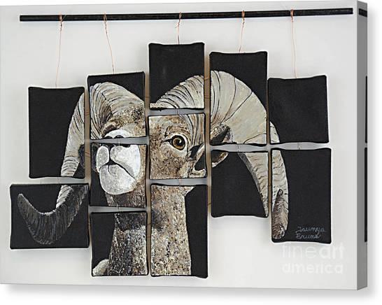 Big Horn Fragments Canvas Print by Taunya Bruns