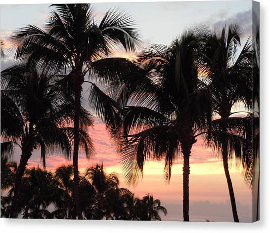 Big Island Sunset 1 Canvas Print