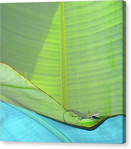 Big Leaves With Lizard Canvas Print