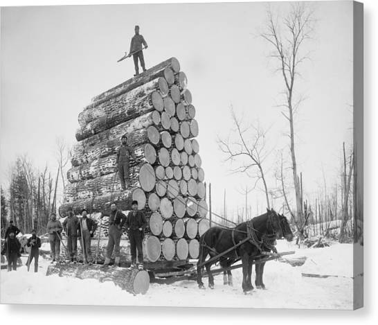 Deforestation Canvas Print - Big Load Of Logs On A Horse Drawn Sled by Everett