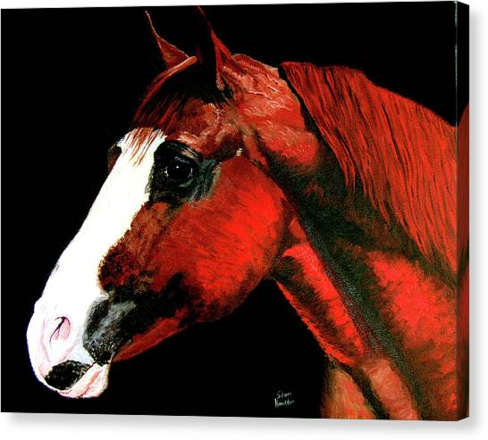 Big Red Canvas Print by Stan Hamilton