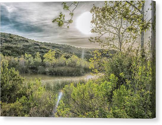 Canvas Print featuring the photograph Big Sun by Alison Frank
