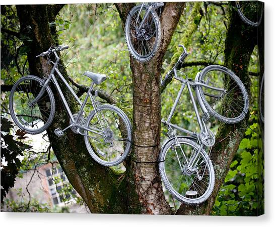Bikes In A Tree Canvas Print