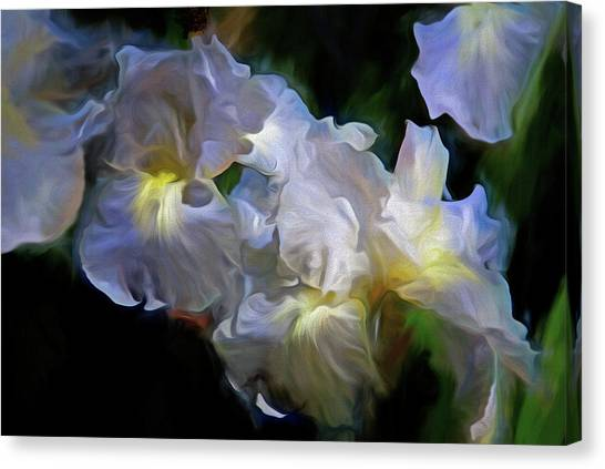 Billowing Irises Canvas Print