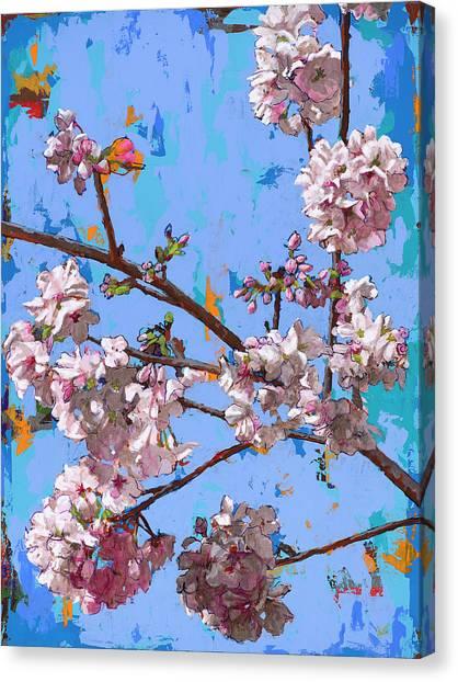 Cherry Blossom Canvas Print - Biosphere #5 by David Palmer