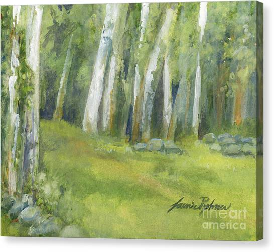 Birch Trees And Spring Field Canvas Print