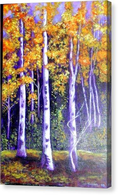 Birches In Canadian Fall Canvas Print