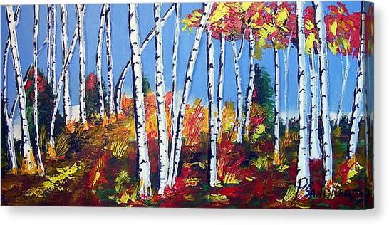 Birches Canvas Print by Paul Sandilands