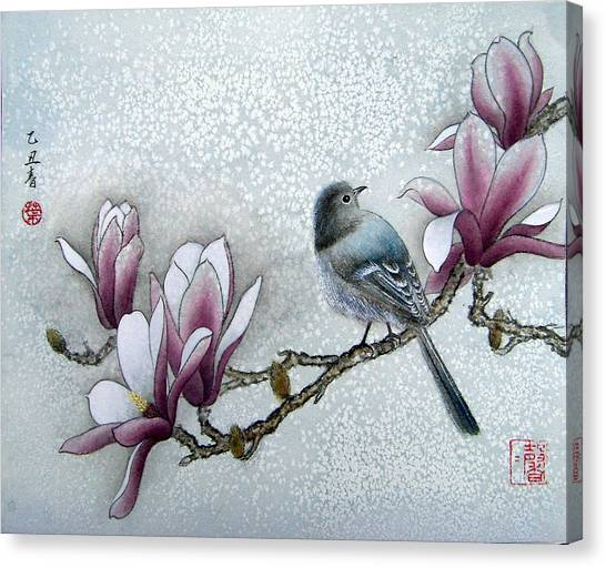 Bird And  Magnolia  Canvas Print by Leaf Moore