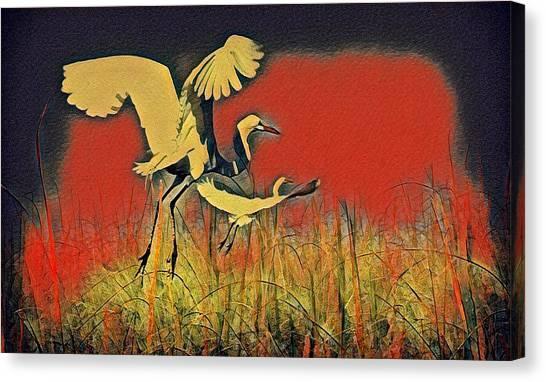 Bird Dreams Canvas Print