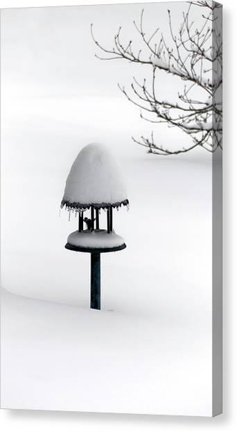Bird Feeder In Snow Canvas Print