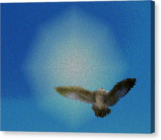Bird In The Sky Canvas Print by Robin Hernandez