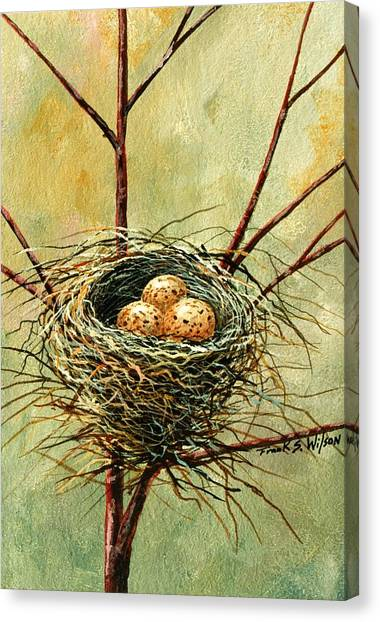Bird Nest Canvas Print