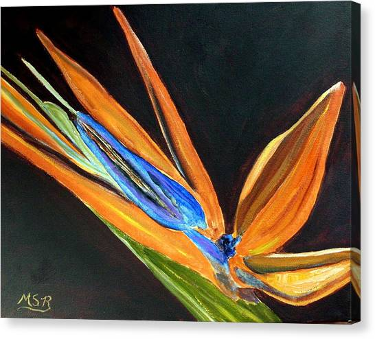 Bird Of Paradise 2 Canvas Print by Maria Soto Robbins