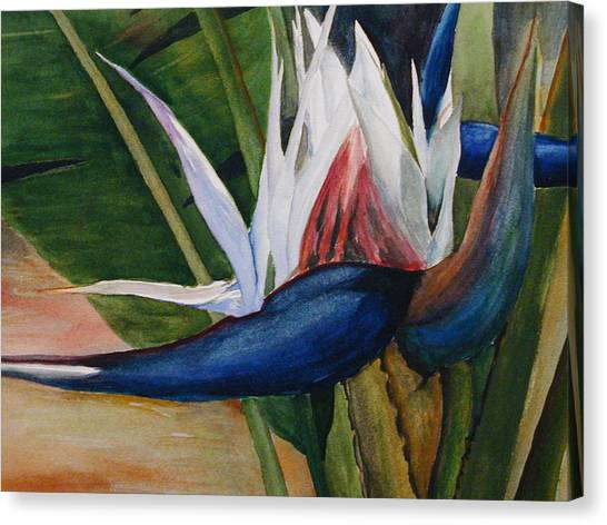 Bird Of Paradise Canvas Print by Dwight Williams