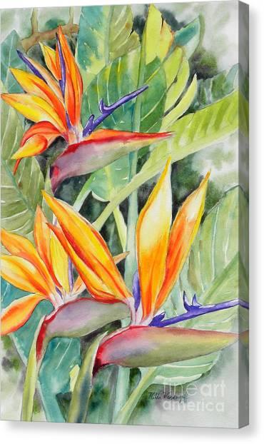 Bird Of Paradise Flowers Canvas Print