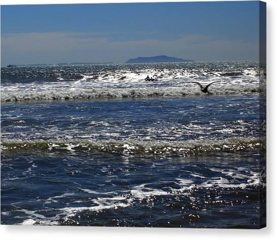 Bird On A Wave Canvas Print by Robin Hernandez