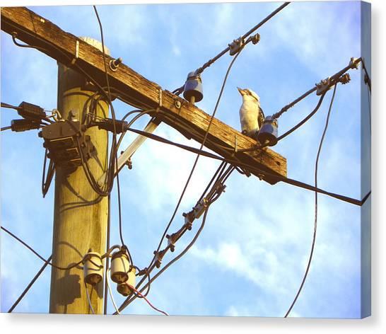 Bird On A Wire Canvas Print by Evguenia Men