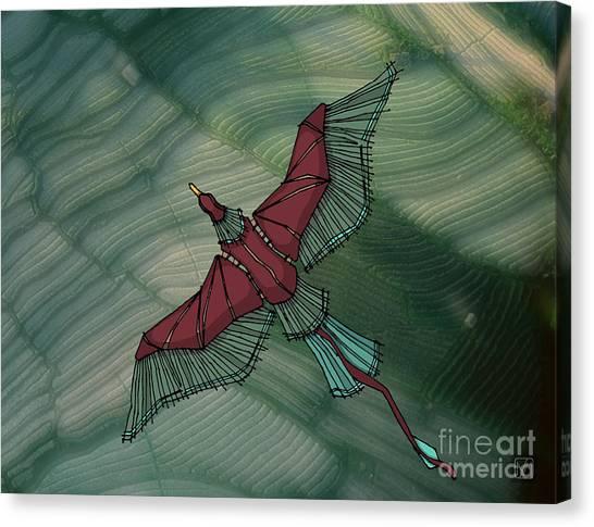 birdEYE volcano III Canvas Print