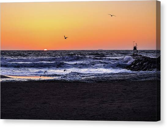 Birds At Sunrise Canvas Print