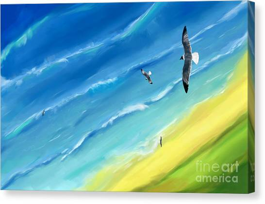 Bird's-eye Above Sea Canvas Print