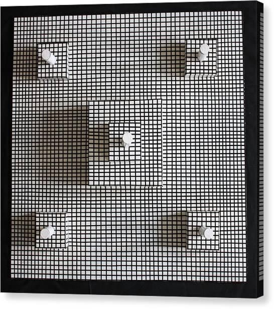 Bird's Eye View Canvas Print by Frank Parrish