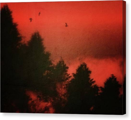 Canvas Print featuring the photograph Birds In A Red Sky by Jan Keteleer