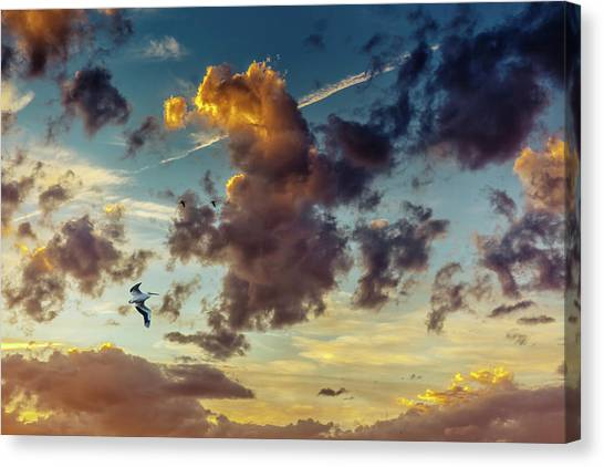 Birds In Flight At Sunset Canvas Print
