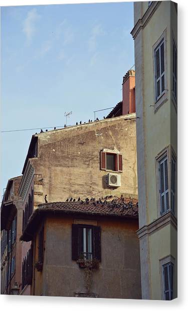 Birds Of A Feather Canvas Print by JAMART Photography