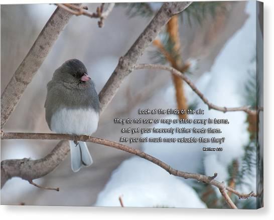Birds Of The Air Canvas Print
