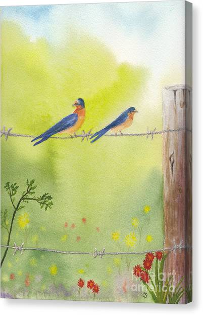 Birds On A Wire Barn Swallows Canvas Print