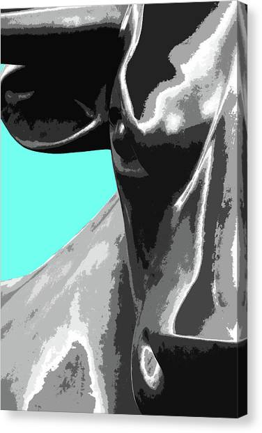 Birmingham Bull Canvas Print