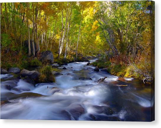 Bishop Creek In Fall Eastern Sierra Photograph Canvas Print