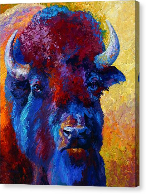 Prairie Canvas Print - Bison Boss by Marion Rose