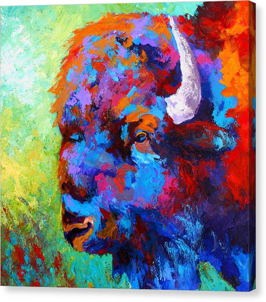 Prairie Canvas Print - Bison Head II by Marion Rose