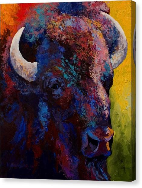 Prairie Canvas Print - Bison Head Study by Marion Rose