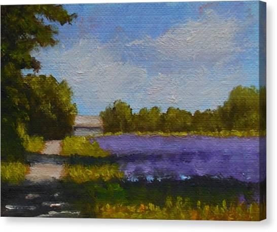 Bit Of Lavender Canvas Print
