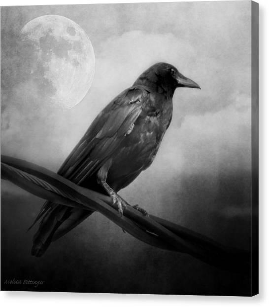 Black And White Gothic Crow Raven Art Canvas Print