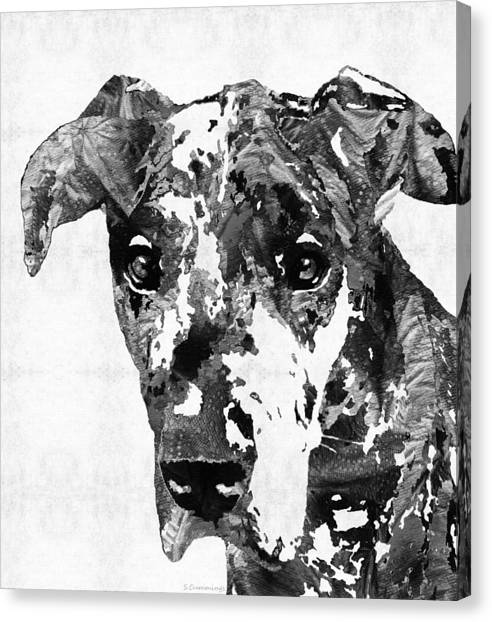 Great Danes Canvas Print - Black And White Great Dane Art Dog By Sharon Cummings by Sharon Cummings