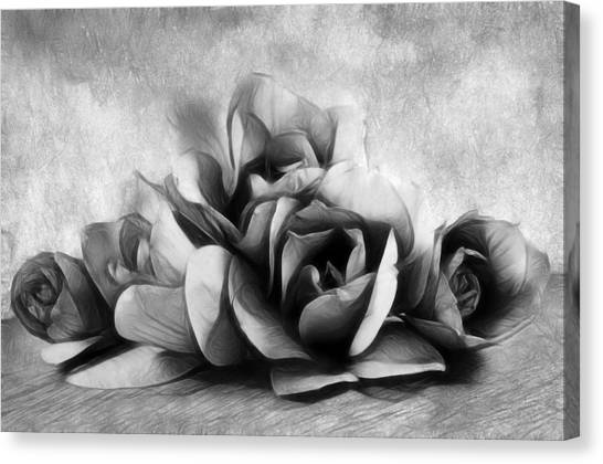 Black Is Beautiful Canvas Print - Black And White Is Beautiful by Georgiana Romanovna