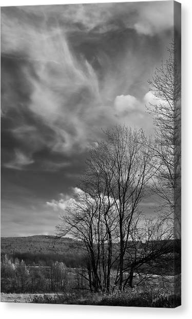 Linda King Canvas Print - Black And White Landscape 5283 by Linda King