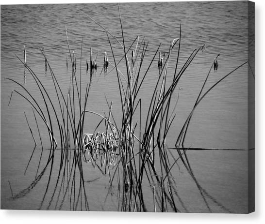 Black And White Marsh Design Canvas Print by Rosalie Scanlon