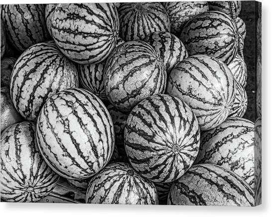 Black And White Mellons Canvas Print
