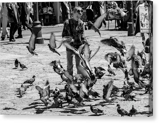 Black And White Of Boy Feeding Pigeons In Sarajevo, Bosnia And Herzegovina  Canvas Print