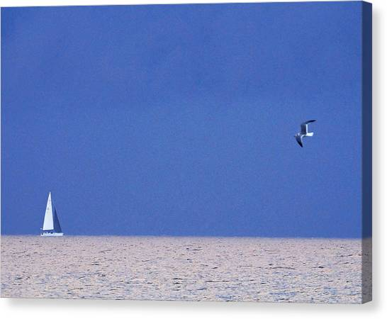 Black And White Sailboat And Seagull Canvas Print
