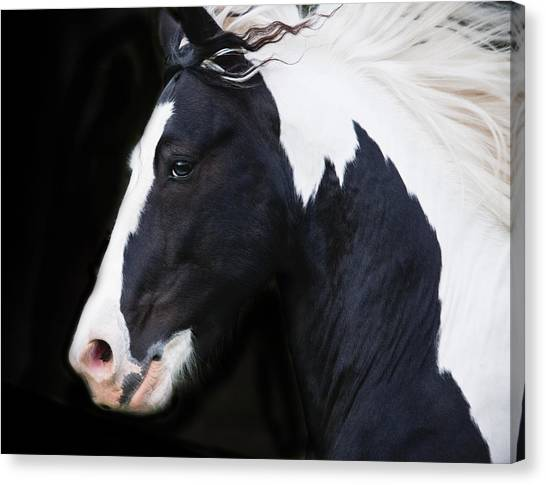Gypsy Canvas Print - Black And White Study by Terry Kirkland Cook